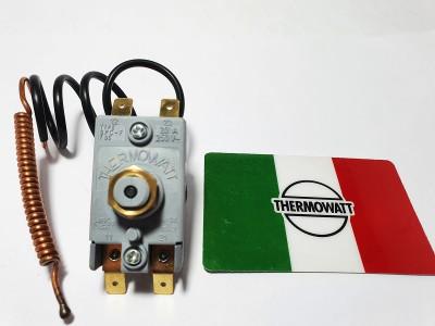 Аварийный двух полосный капиллярный термостат с кнопкой ручного включения.